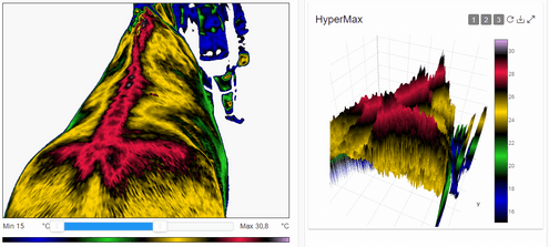 Hypermax 3D infraroodfoto, rug paard